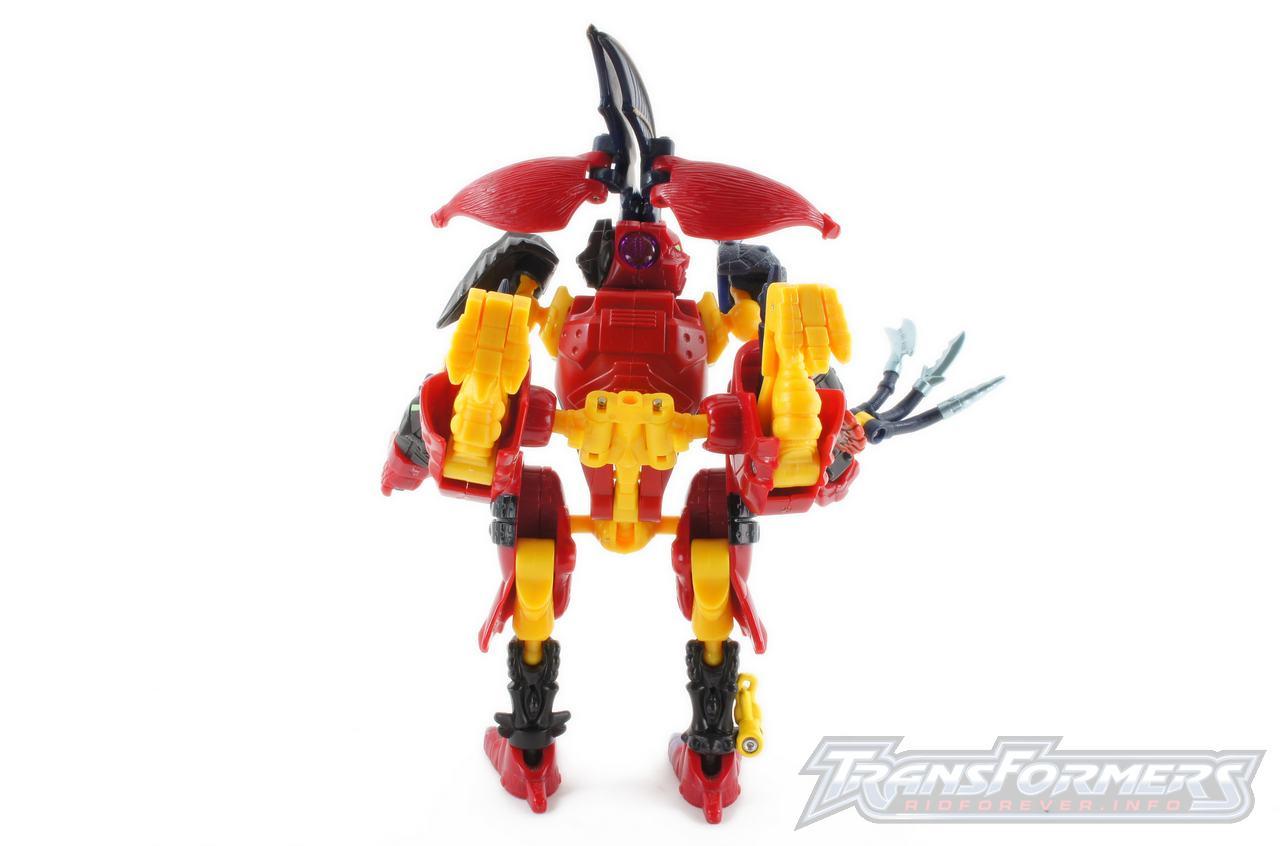 Bruticus-020