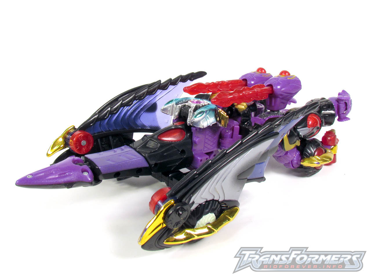 RID Megatron 024