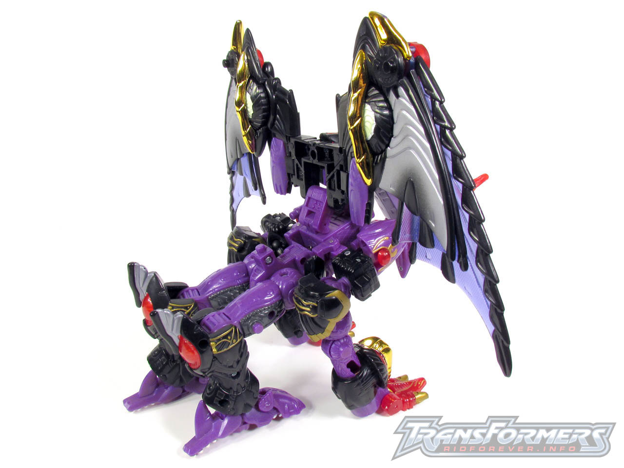 RID Megatron 044