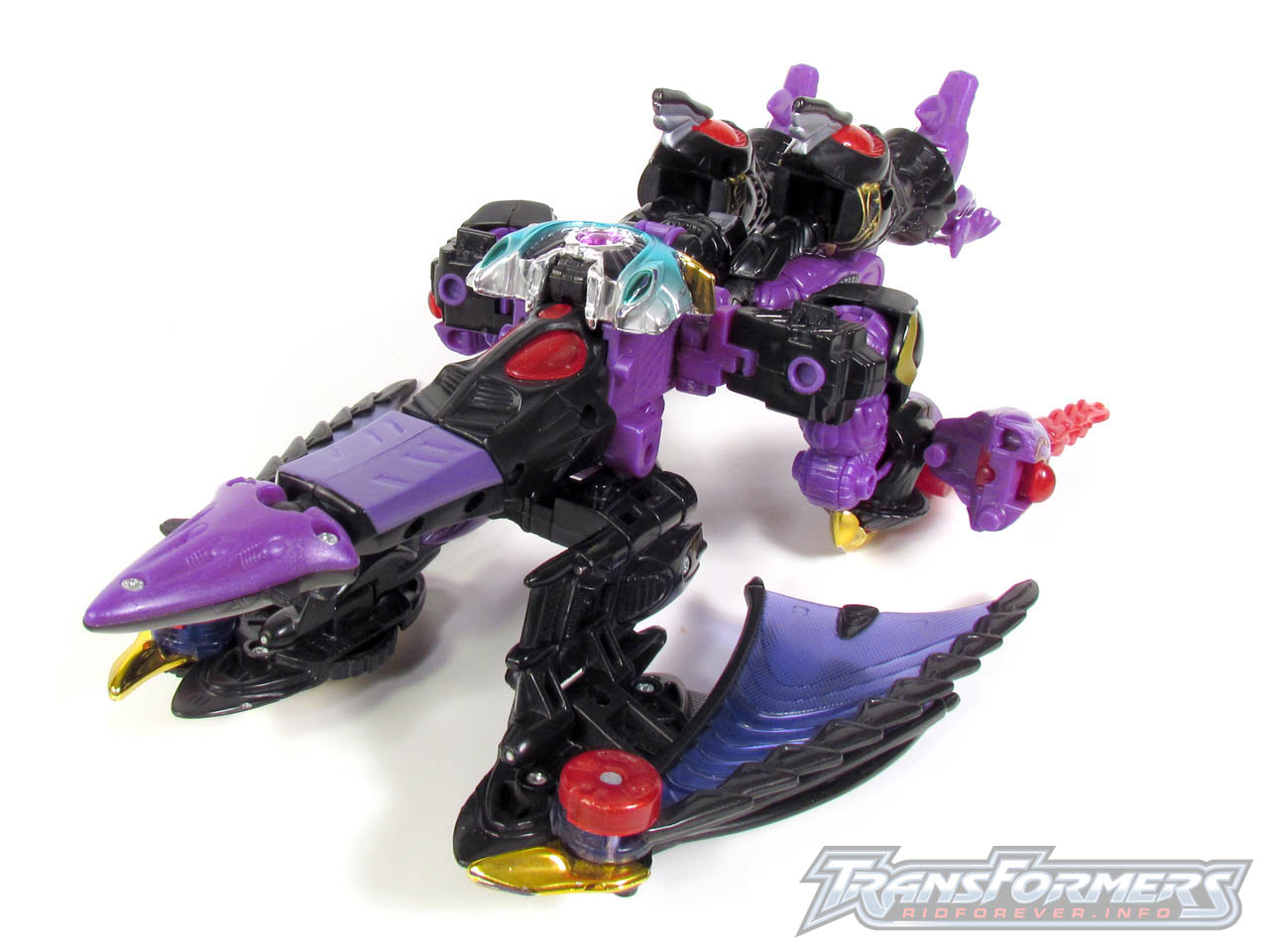 RID Megatron 047