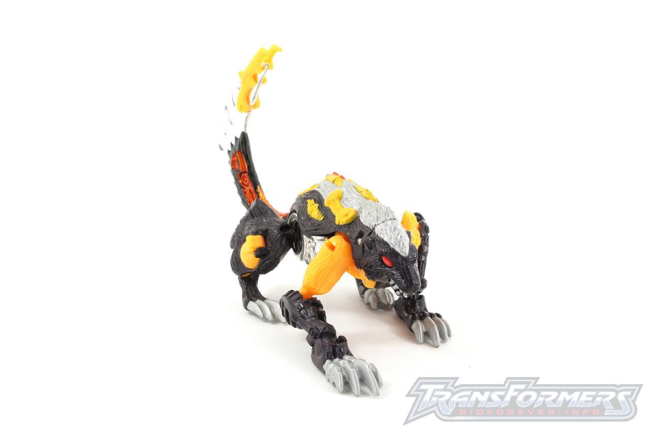 Gas Skunk-036