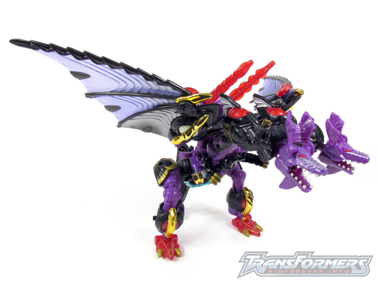 RID Megatron 018