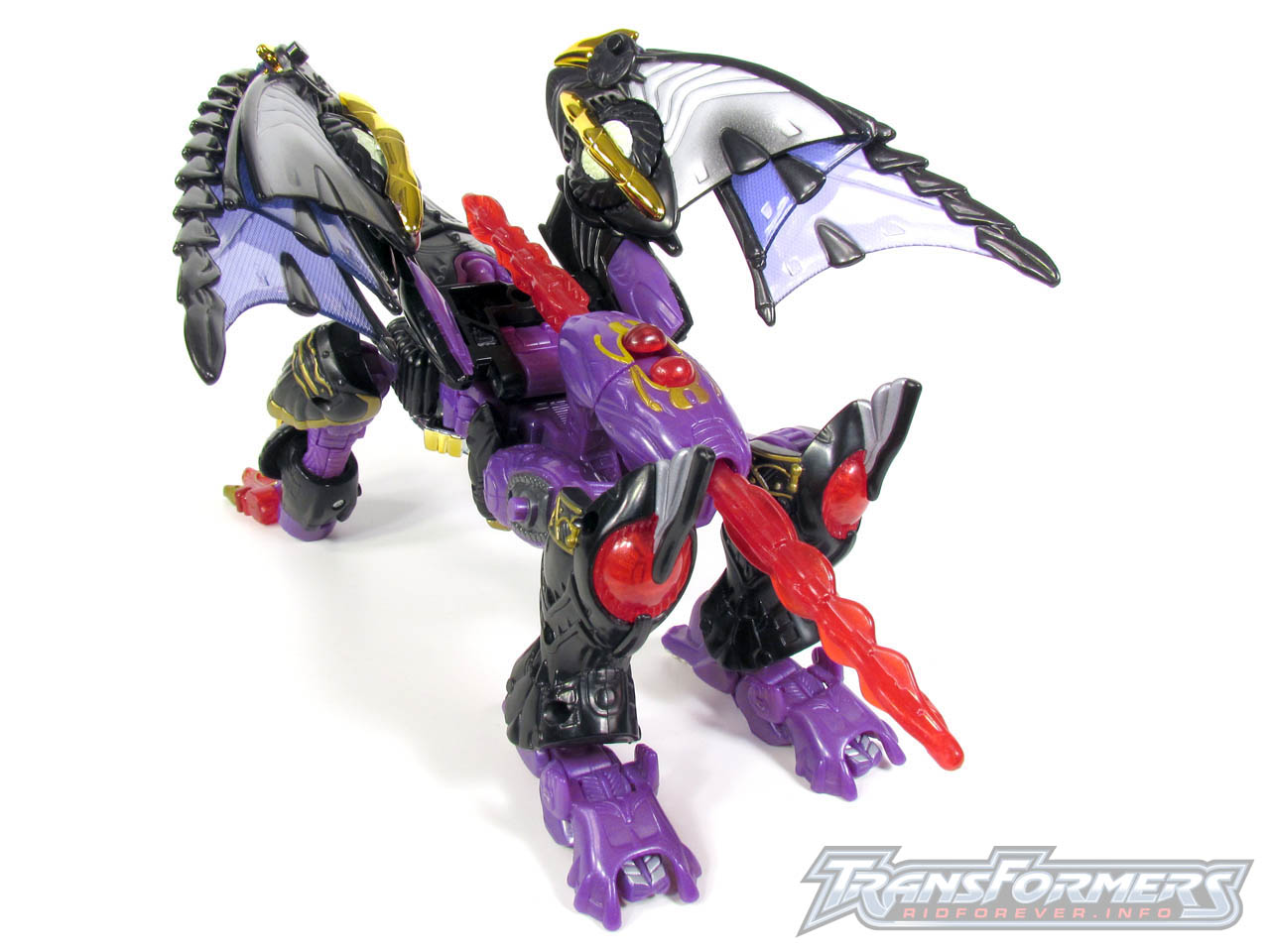 RID Megatron 034