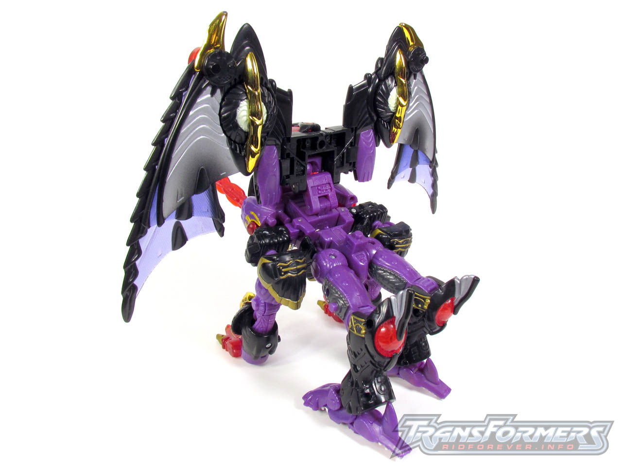 RID Megatron 045