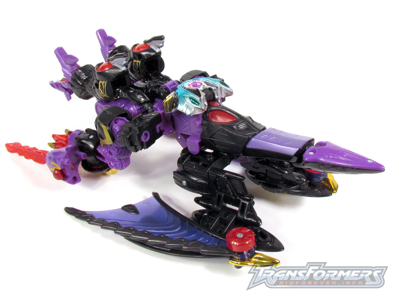 RID Megatron 049